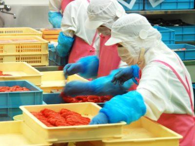食品加工工場の安全は防犯監視カメラで守るのが効果的